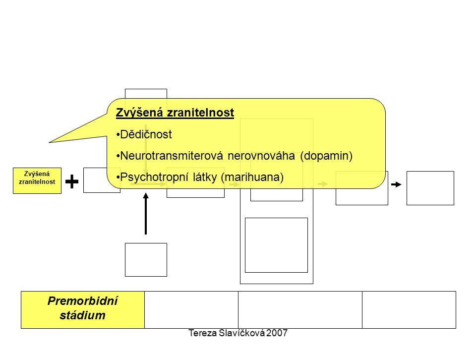 Tereza Slavíčková 2007 Premorbidní stádium Zvýšená zranitelnost Dědičnost Neurotransmiterová nerovnováha (dopamin) Psychotropní látky (marihuana)