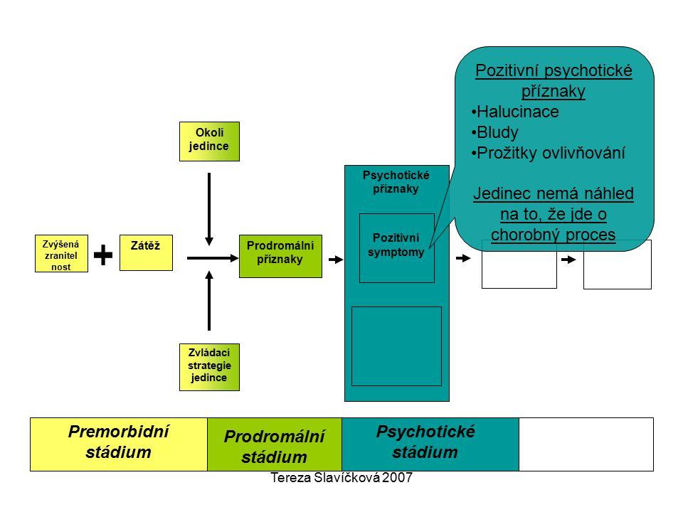 Tereza Slavíčková 2007 Premorbidní stádium Psychotické příznaky Pozitivní symptomy Okolí jedince Zvládací strategie jedince Prodromální příznaky Zátěž