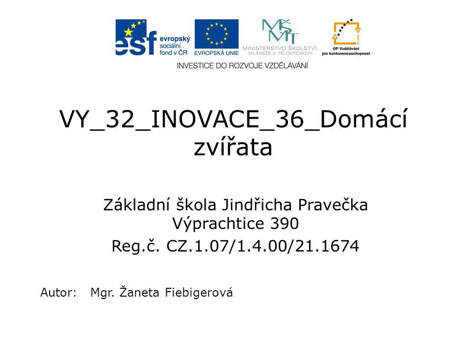 VY_32_INOVACE_36_Domácí zvířata Základní škola Jindřicha Pravečka Výprachtice 390 Reg.č.
