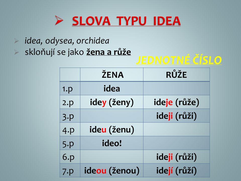  SLOVA TYPU IDEA  idea, odysea, orchidea  skloňují se jako žena a růže ŽENARŮŽE 1.pidea 2.pidey (ženy)ideje (růže) 3.pideji (růži) 4.pideu (ženu) 5.pideo.