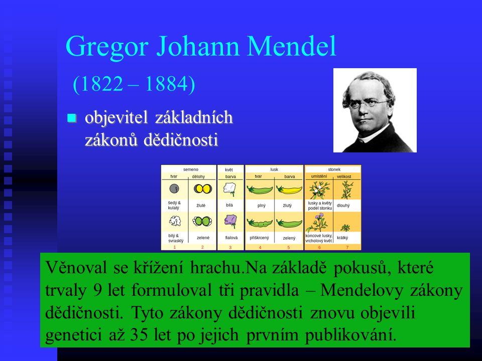 Gregor Johann Mendel (1822 – 1884) objevitel základních zákonů dědičnosti objevitel základních zákonů dědičnosti Věnoval se křížení hrachu.Na základě pokusů, které trvaly 9 let formuloval tři pravidla – Mendelovy zákony dědičnosti.
