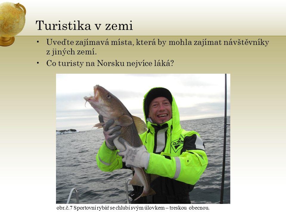 Zajímavost divoká příroda – tundra a tajga = pozor na losy troll – bájná mytologická postavatroll obr.č.8 Norští řidiči si musí dávat pozor především na přecházející divoká zvířata.