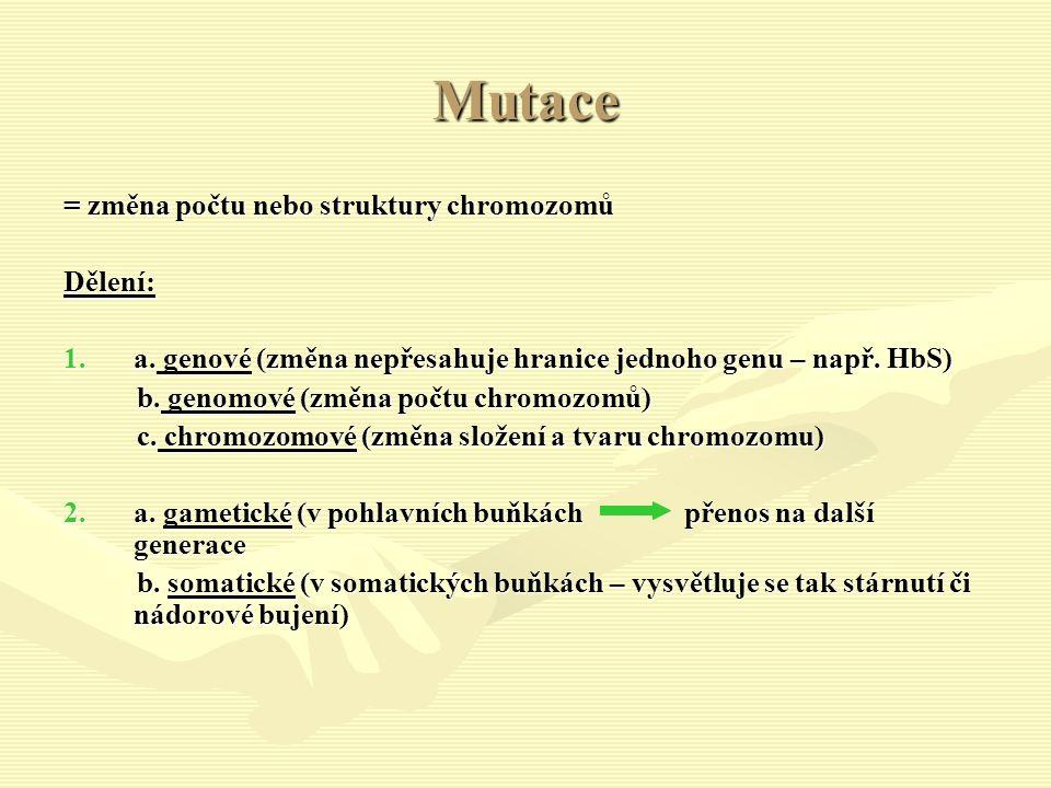 Mutace = změna počtu nebo struktury chromozomů Dělení: 1.a.