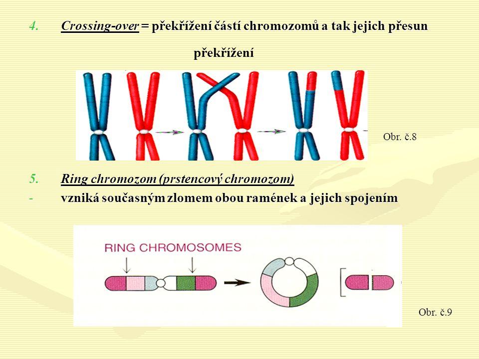 4.Crossing-over = překřížení částí chromozomů a tak jejich přesun 5.Ring chromozom (prstencový chromozom) -vzniká současným zlomem obou ramének a jejich spojením překřížení Obr.