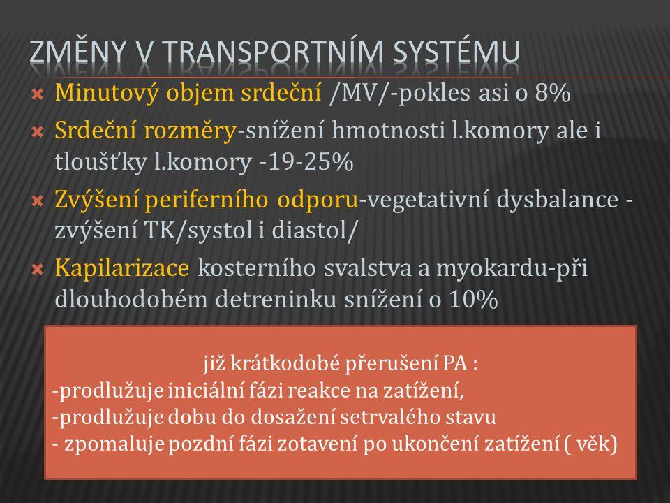  Minutový objem srdeční /MV/-pokles asi o 8%  Srdeční rozměry-snížení hmotnosti l.komory ale i tloušťky l.komory -19-25%  Zvýšení periferního odporu-vegetativní dysbalance - zvýšení TK/systol i diastol/  Kapilarizace kosterního svalstva a myokardu-při dlouhodobém detreninku snížení o 10% již krátkodobé přerušení PA : -prodlužuje iniciální fázi reakce na zatížení, -prodlužuje dobu do dosažení setrvalého stavu - zpomaluje pozdní fázi zotavení po ukončení zatížení ( věk)