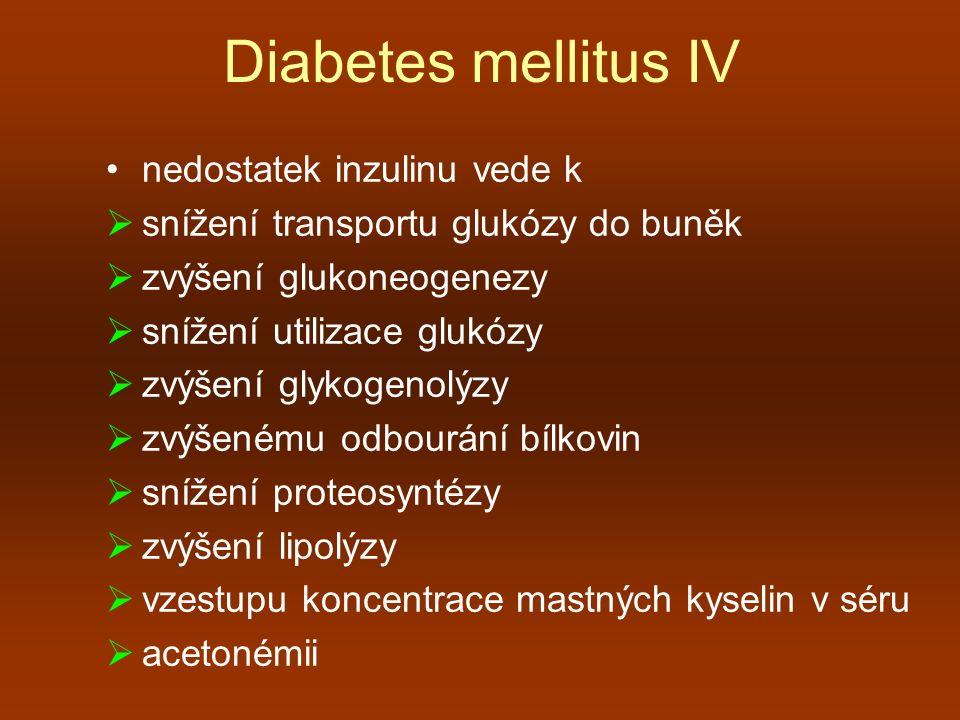 Diabetes mellitus IV nedostatek inzulinu vede k  snížení transportu glukózy do buněk  zvýšení glukoneogenezy  snížení utilizace glukózy  zvýšení g
