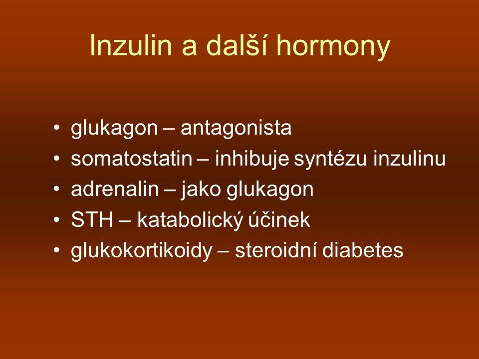 Inzulin a další hormony glukagon – antagonista somatostatin – inhibuje syntézu inzulinu adrenalin – jako glukagon STH – katabolický účinek glukokortik
