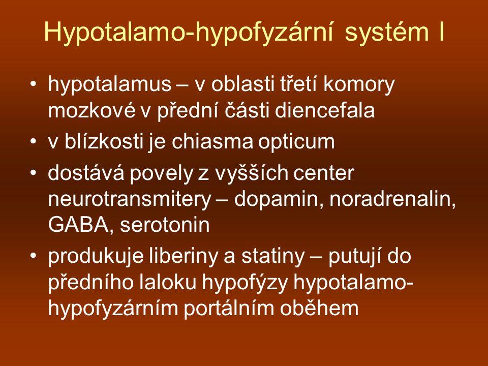 Hypotalamo-hypofyzární systém I hypotalamus – v oblasti třetí komory mozkové v přední části diencefala v blízkosti je chiasma opticum dostává povely z
