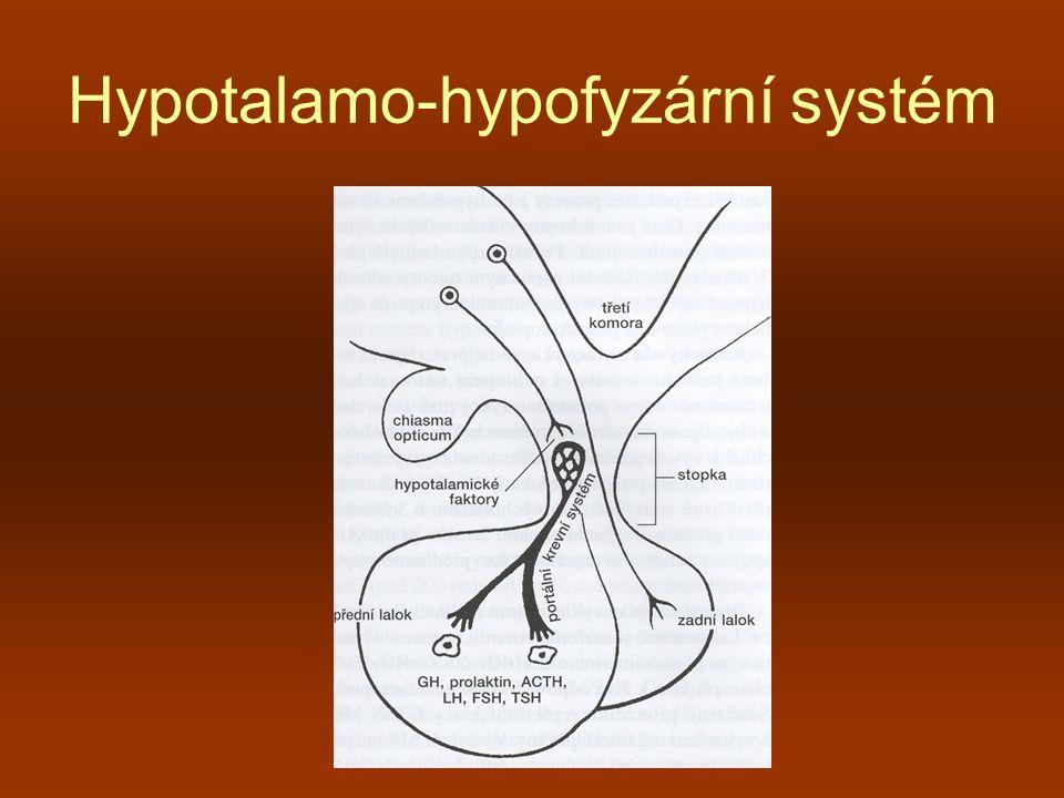 Hypotalamo – hypofyzární systém II LHRH – luteinizační hormon releasing hormon TRH – thyreoid … CRH – corticotropin … GHRH – growth hormon … GHIH – growth hormon inhibiting hormon