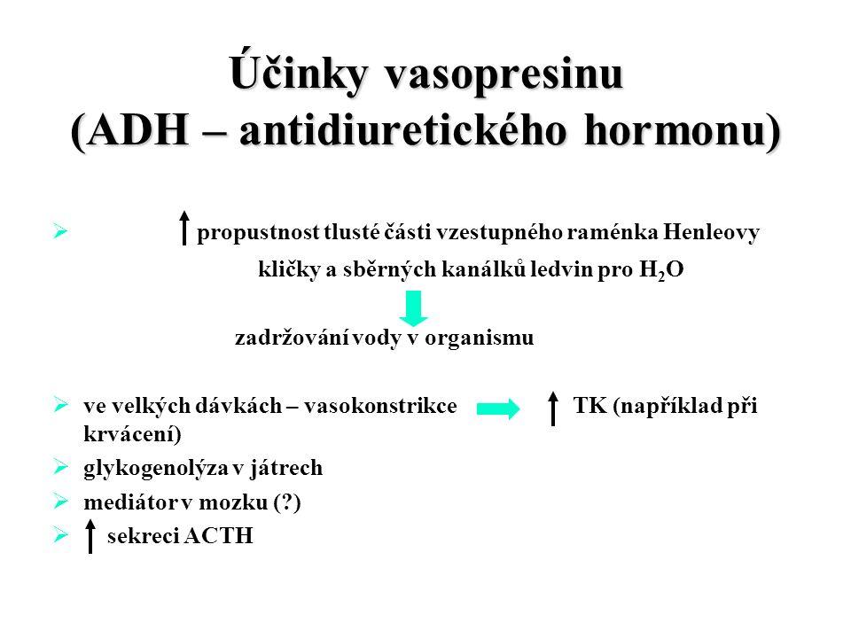 Účinky vasopresinu (ADH – antidiuretického hormonu)  propustnost tlusté části vzestupného raménka Henleovy kličky a sběrných kanálků ledvin pro H 2 O zadržování vody v organismu  ve velkých dávkách – vasokonstrikce TK (například při krvácení)  glykogenolýza v játrech  mediátor v mozku ( )  sekreci ACTH