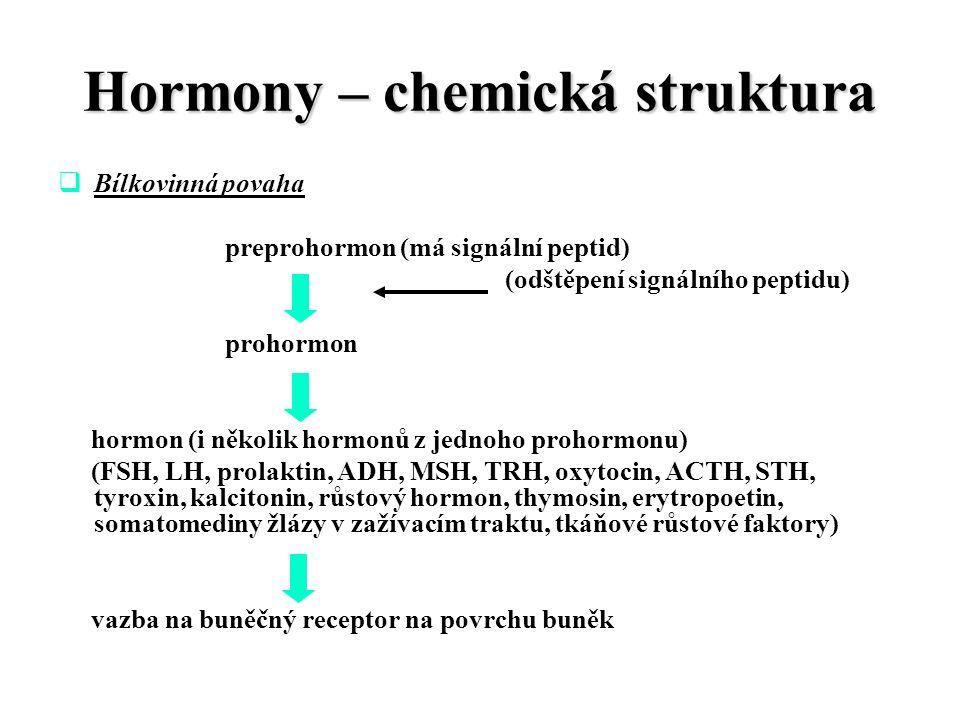 Hormony – chemická struktura  Bílkovinná povaha preprohormon (má signální peptid) (odštěpení signálního peptidu) prohormon hormon (i několik hormonů z jednoho prohormonu) (FSH, LH, prolaktin, ADH, MSH, TRH, oxytocin, ACTH, STH, tyroxin, kalcitonin, růstový hormon, thymosin, erytropoetin, somatomediny žlázy v zažívacím traktu, tkáňové růstové faktory) vazba na buněčný receptor na povrchu buněk