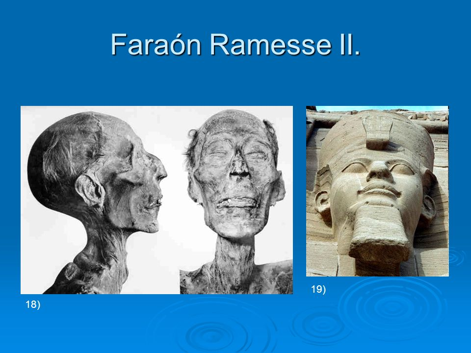 Faraón Ramesse II. 18) 19)