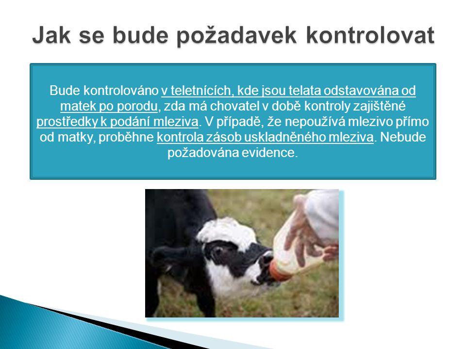 Bude kontrolováno v teletnících, kde jsou telata odstavována od matek po porodu, zda má chovatel v době kontroly zajištěné prostředky k podání mleziva.