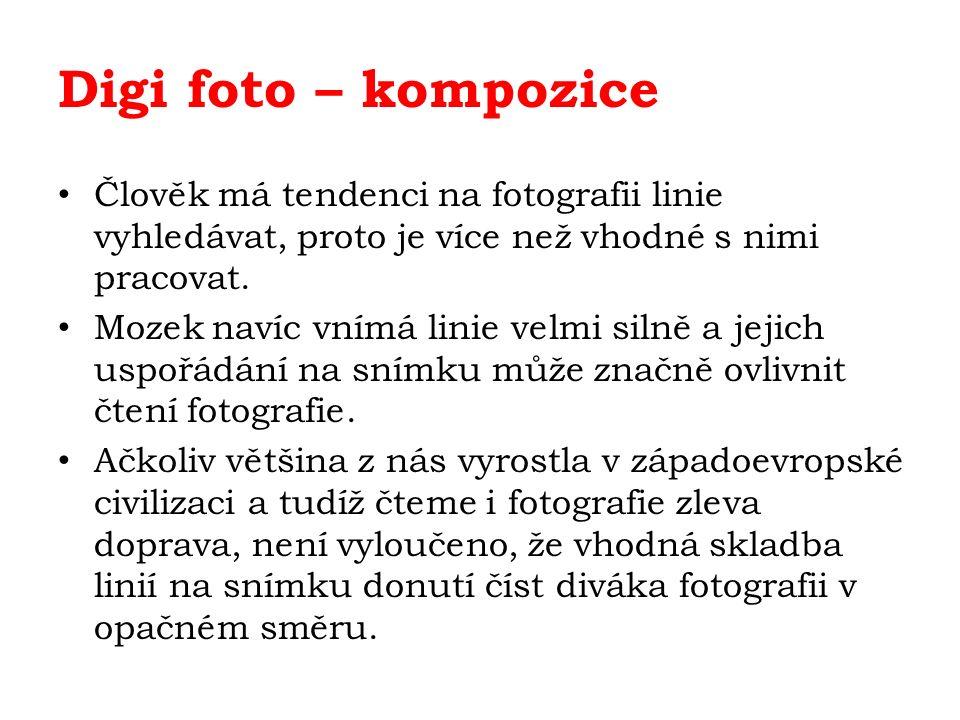 Digi foto – kompozice Člověk má tendenci na fotografii linie vyhledávat, proto je více než vhodné s nimi pracovat.