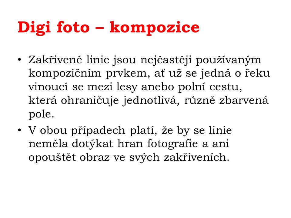 Digi foto – kompozice Zakřivené linie jsou nejčastěji používaným kompozičním prvkem, ať už se jedná o řeku vinoucí se mezi lesy anebo polní cestu, která ohraničuje jednotlivá, různě zbarvená pole.