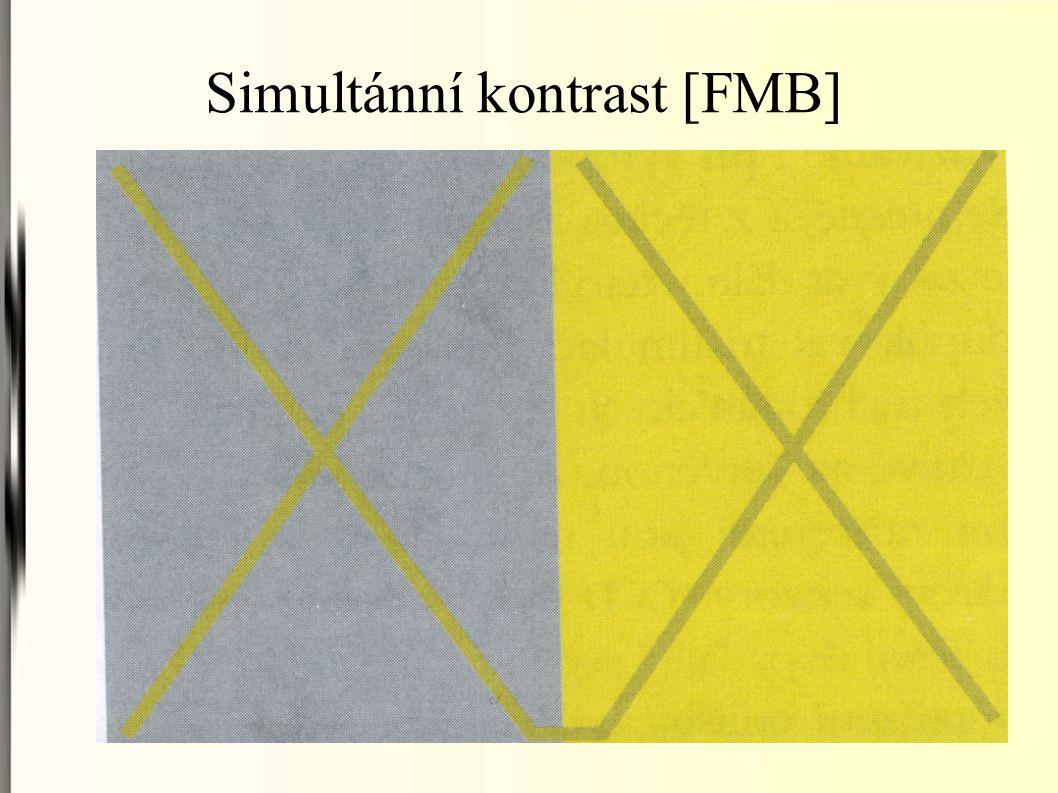 Simultánní kontrast [FMB]