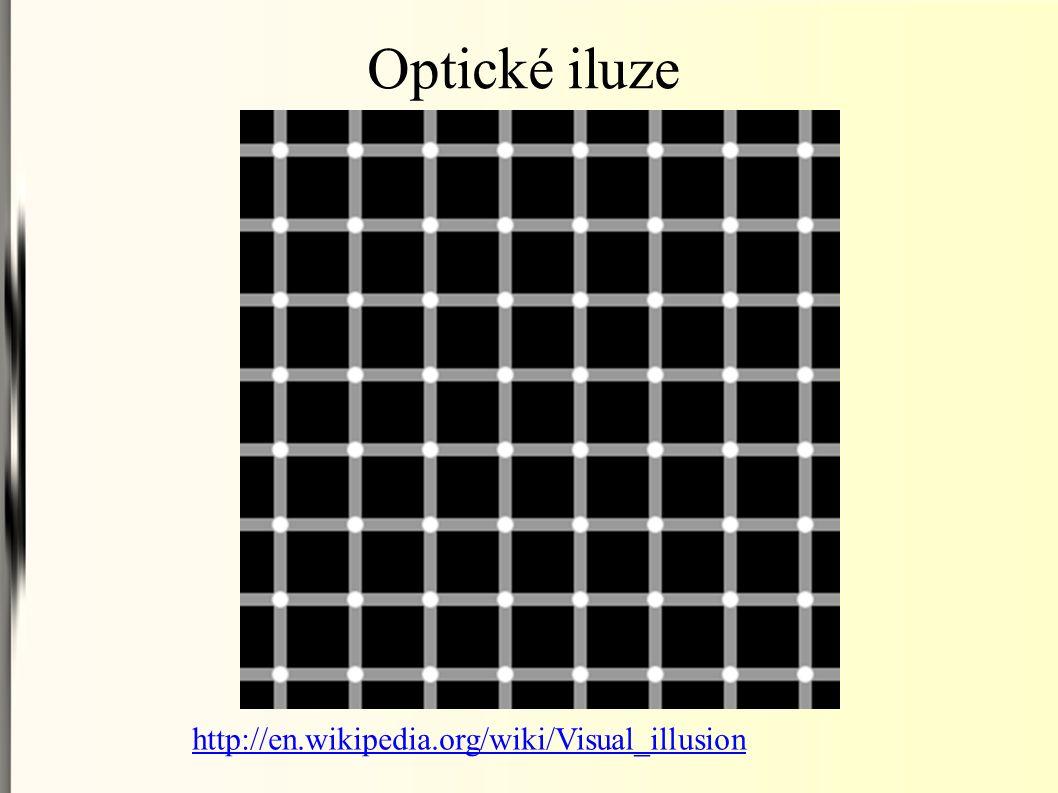 Optické iluze http://en.wikipedia.org/wiki/Visual_illusion