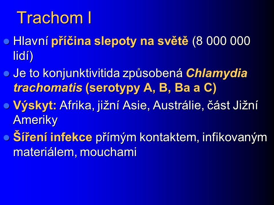 Trachom I Hlavní příčina slepoty na světě (8 000 000 lidí) Hlavní příčina slepoty na světě (8 000 000 lidí) Je to konjunktivitida způsobená Chlamydia trachomatis (serotypy A, B, Ba a C) Je to konjunktivitida způsobená Chlamydia trachomatis (serotypy A, B, Ba a C) Výskyt: Afrika, jižní Asie, Austrálie, část Jižní Ameriky Výskyt: Afrika, jižní Asie, Austrálie, část Jižní Ameriky Šíření infekce přímým kontaktem, infikovaným materiálem, mouchami Šíření infekce přímým kontaktem, infikovaným materiálem, mouchami