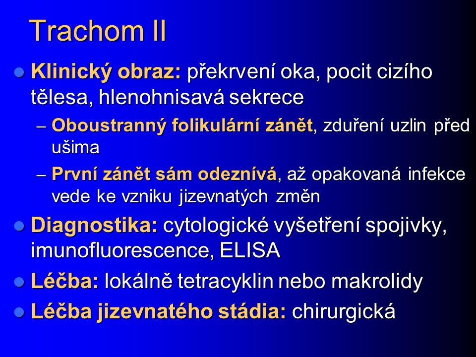 Trachom II Klinický obraz: překrvení oka, pocit cizího tělesa, hlenohnisavá sekrece Klinický obraz: překrvení oka, pocit cizího tělesa, hlenohnisavá s