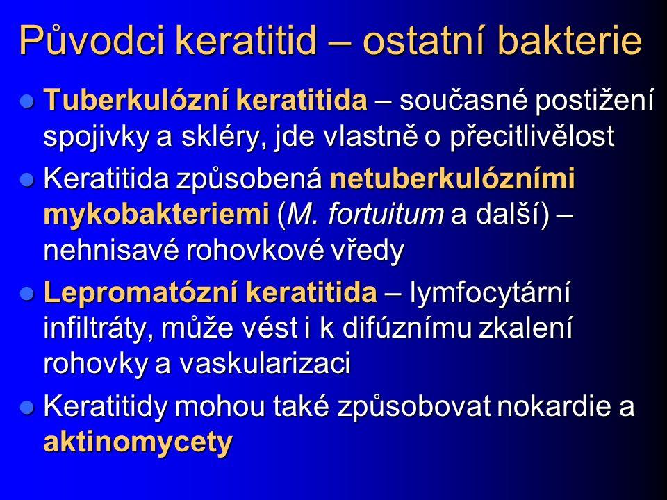 Původci keratitid – ostatní bakterie Tuberkulózní keratitida – současné postižení spojivky a skléry, jde vlastně o přecitlivělost Tuberkulózní keratitida – současné postižení spojivky a skléry, jde vlastně o přecitlivělost Keratitida způsobená netuberkulózními mykobakteriemi (M.