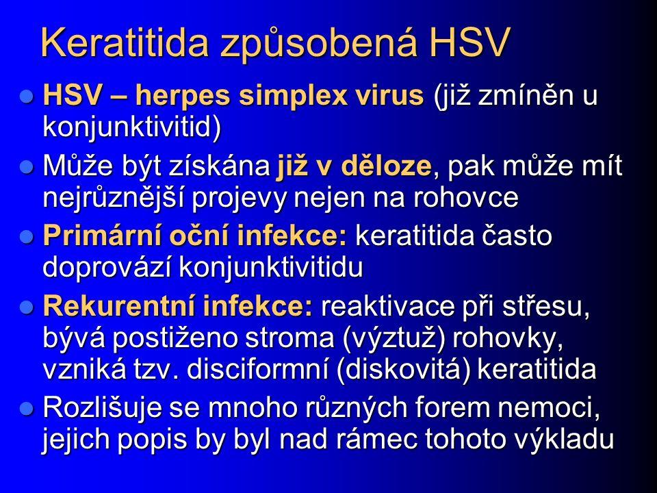 Keratitida způsobená HSV HSV – herpes simplex virus (již zmíněn u konjunktivitid) HSV – herpes simplex virus (již zmíněn u konjunktivitid) Může být získána již v děloze, pak může mít nejrůznější projevy nejen na rohovce Může být získána již v děloze, pak může mít nejrůznější projevy nejen na rohovce Primární oční infekce: keratitida často doprovází konjunktivitidu Primární oční infekce: keratitida často doprovází konjunktivitidu Rekurentní infekce: reaktivace při střesu, bývá postiženo stroma (výztuž) rohovky, vzniká tzv.