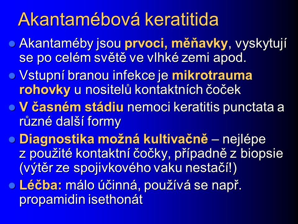 Akantamébová keratitida Akantaméby jsou prvoci, měňavky, vyskytují se po celém světě ve vlhké zemi apod. Akantaméby jsou prvoci, měňavky, vyskytují se