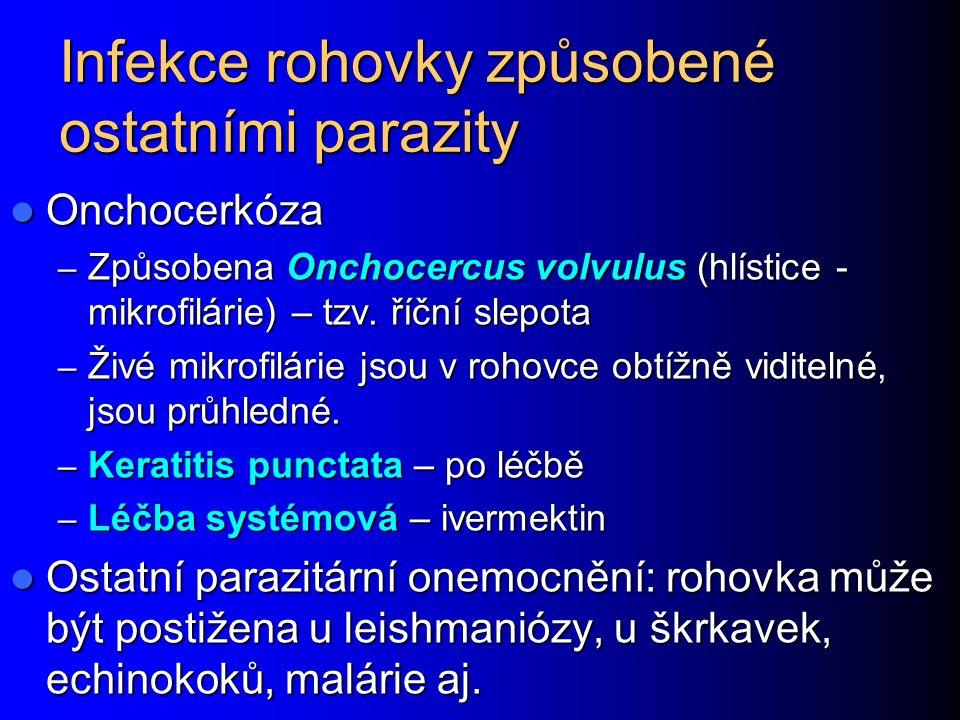 Infekce rohovky způsobené ostatními parazity Onchocerkóza Onchocerkóza – Způsobena Onchocercus volvulus (hlístice - mikrofilárie) – tzv. říční slepota
