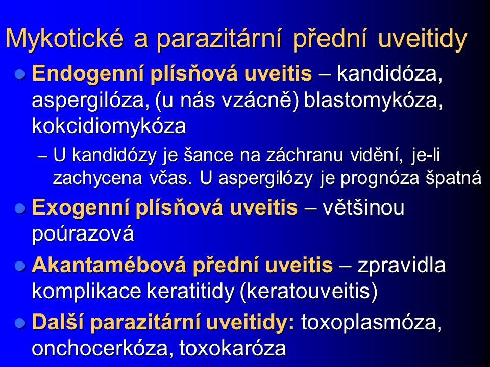 Mykotické a parazitární přední uveitidy Endogenní plísňová uveitis – kandidóza, aspergilóza, (u nás vzácně) blastomykóza, kokcidiomykóza Endogenní plísňová uveitis – kandidóza, aspergilóza, (u nás vzácně) blastomykóza, kokcidiomykóza – U kandidózy je šance na záchranu vidění, je-li zachycena včas.