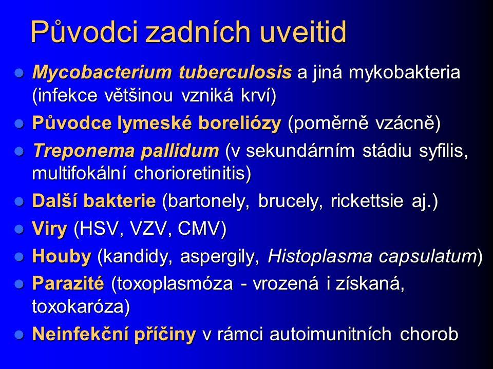 Původci zadních uveitid Mycobacterium tuberculosis a jiná mykobakteria (infekce většinou vzniká krví) Mycobacterium tuberculosis a jiná mykobakteria (infekce většinou vzniká krví) Původce lymeské boreliózy (poměrně vzácně) Původce lymeské boreliózy (poměrně vzácně) Treponema pallidum (v sekundárním stádiu syfilis, multifokální chorioretinitis) Treponema pallidum (v sekundárním stádiu syfilis, multifokální chorioretinitis) Další bakterie (bartonely, brucely, rickettsie aj.) Další bakterie (bartonely, brucely, rickettsie aj.) Viry (HSV, VZV, CMV) Viry (HSV, VZV, CMV) Houby (kandidy, aspergily, Histoplasma capsulatum) Houby (kandidy, aspergily, Histoplasma capsulatum) Parazité (toxoplasmóza - vrozená i získaná, toxokaróza) Parazité (toxoplasmóza - vrozená i získaná, toxokaróza) Neinfekční příčiny v rámci autoimunitních chorob Neinfekční příčiny v rámci autoimunitních chorob
