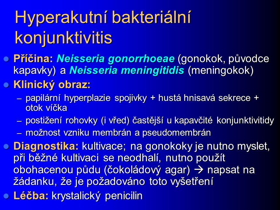 Hyperakutní bakteriální konjunktivitis Příčina: Neisseria gonorrhoeae (gonokok, původce kapavky) a Neisseria meningitidis (meningokok) Příčina: Neisseria gonorrhoeae (gonokok, původce kapavky) a Neisseria meningitidis (meningokok) Klinický obraz: Klinický obraz: – papilární hyperplazie spojivky + hustá hnisavá sekrece + otok víčka – postižení rohovky (i vřed) častější u kapavčité konjunktivitidy – možnost vzniku membrán a pseudomembrán Diagnostika: kultivace; na gonokoky je nutno myslet, při běžné kultivaci se neodhalí, nutno použít obohacenou půdu (čokoládový agar)  napsat na žádanku, že je požadováno toto vyšetření Diagnostika: kultivace; na gonokoky je nutno myslet, při běžné kultivaci se neodhalí, nutno použít obohacenou půdu (čokoládový agar)  napsat na žádanku, že je požadováno toto vyšetření Léčba: krystalický penicilin Léčba: krystalický penicilin