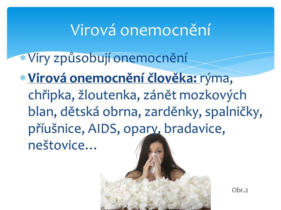  Viry způsobují onemocnění  Virová onemocnění člověka: rýma, chřipka, žloutenka, zánět mozkových blan, dětská obrna, zarděnky, spalničky, příušnice,