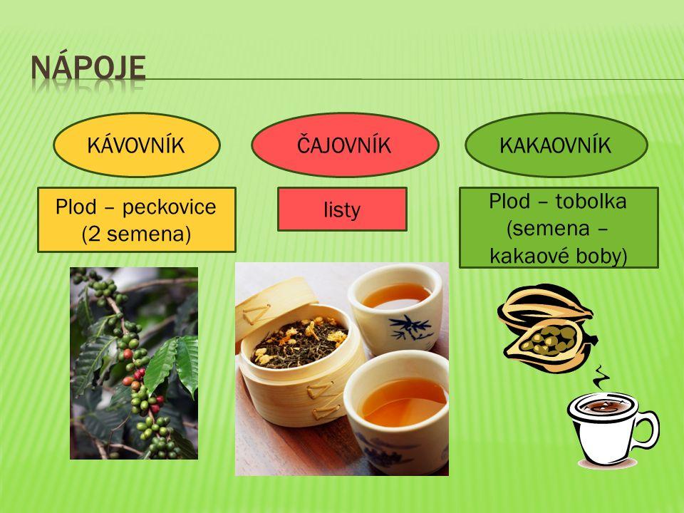 KÁVOVNÍKKAKAOVNÍKČAJOVNÍK Plod – peckovice (2 semena) listy Plod – tobolka (semena – kakaové boby)