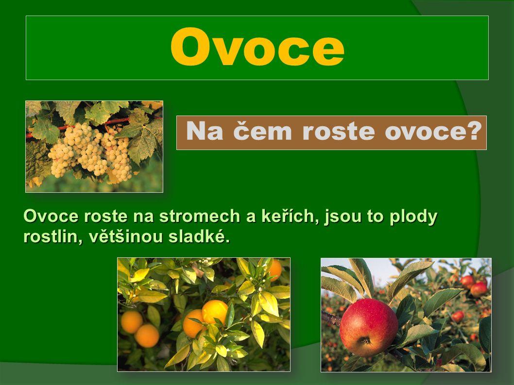 Ovoce Na čem roste ovoce Ovoce roste na stromech a keřích, jsou to plody rostlin, většinou sladké.