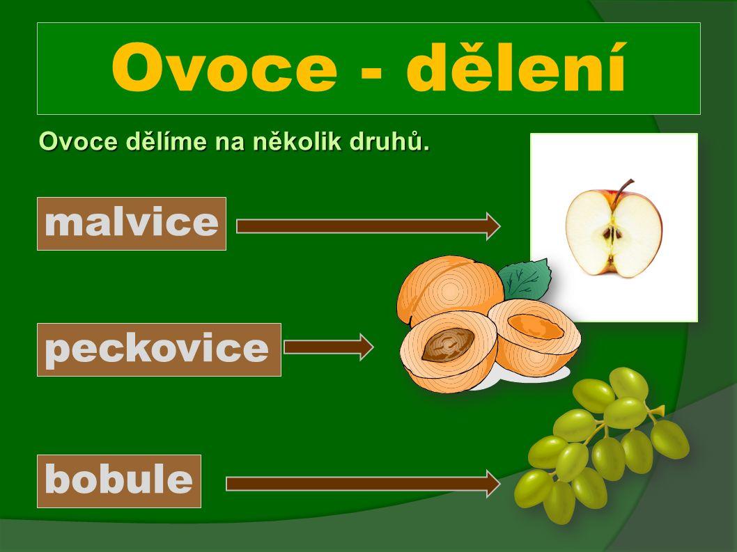 Přiřaďte ovoce k jednotlivým druhům. malvice jablko borůvka meruňka hruška třešeň peckovice bobule