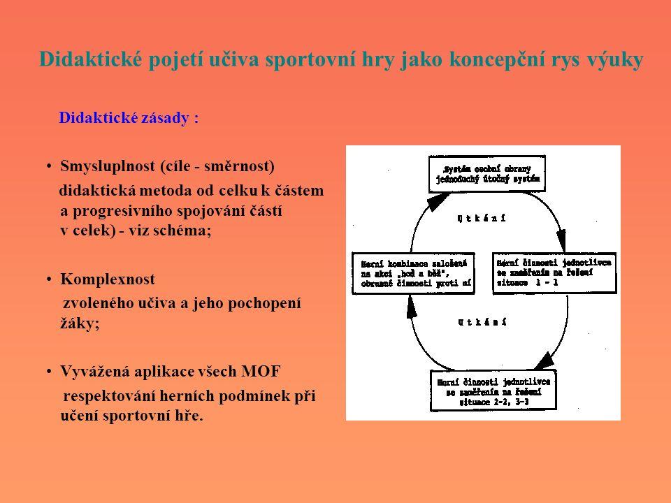 Didaktické pojetí učiva sportovní hry jako koncepční rys výuky Didaktické zásady : Smysluplnost (cíle - směrnost) didaktická metoda od celku k částem