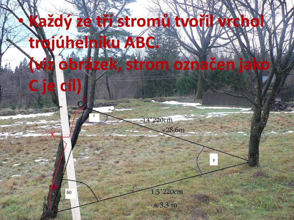 Každý ze tří stromů tvořil vrchol trojúhelníku ABC. (viz obrázek, strom označen jako C je cíl)