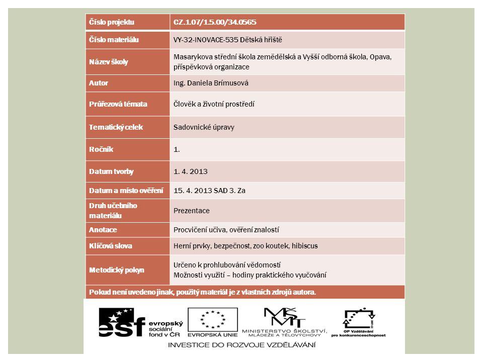 Číslo projektuCZ.1.07/1.5.00/34.0565 Číslo materiáluVY-32-INOVACE-535 Dětská hřiště Název školy Masarykova střední škola zemědělská a Vyšší odborná šk