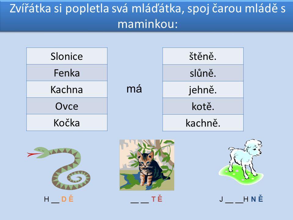 Zvířátka si popletla svá mláďátka, spoj čarou mládě s maminkou: Slonice Fenka Kachna Ovce Kočka štěně.