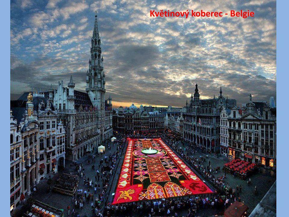 Květinový koberec - Belgie
