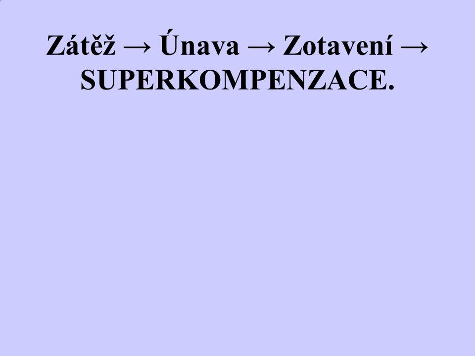 Zátěž → Únava → Zotavení → SUPERKOMPENZACE.