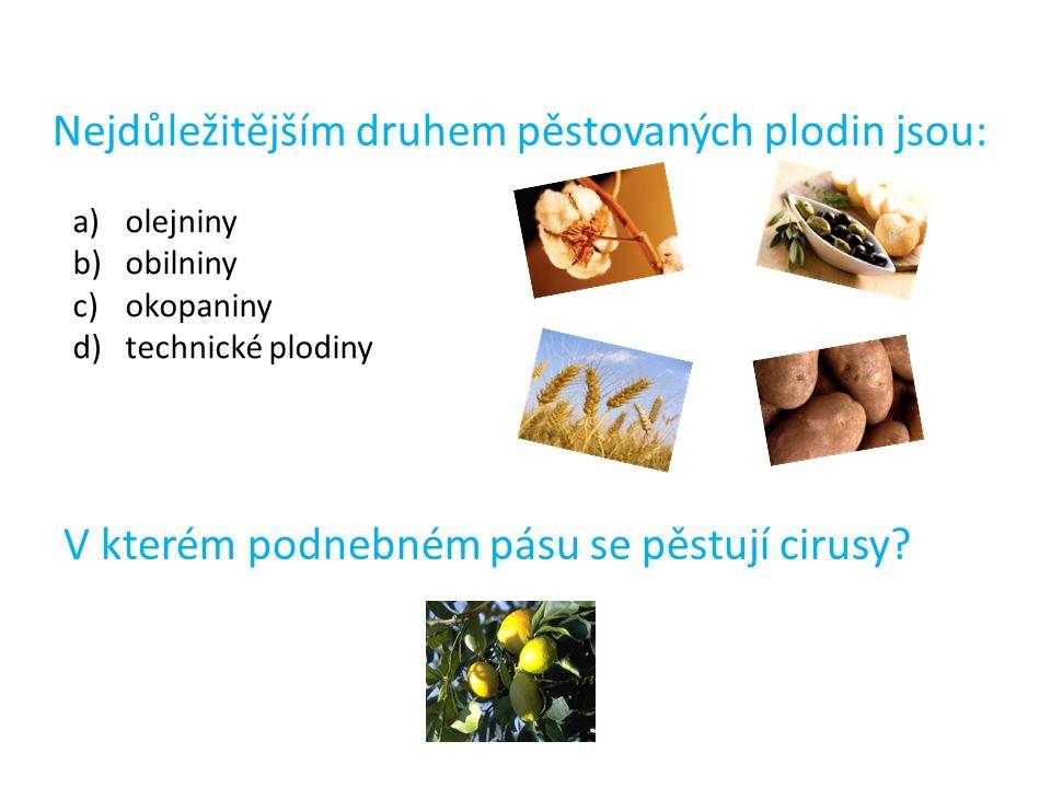 Nejdůležitějším druhem pěstovaných plodin jsou: a)olejniny b)obilniny c)okopaniny d)technické plodiny V kterém podnebném pásu se pěstují cirusy?