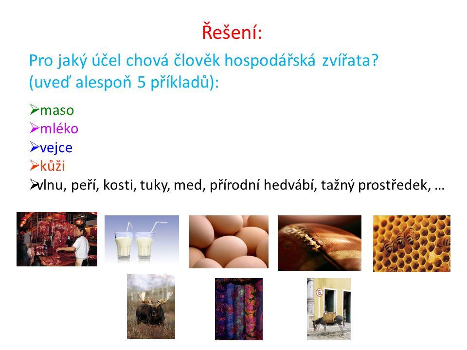 Pro jaký účel chová člověk hospodářská zvířata? (uveď alespoň 5 příkladů):  maso  mléko  vejce  kůži  vlnu, peří, kosti, tuky, med, přírodní hedv