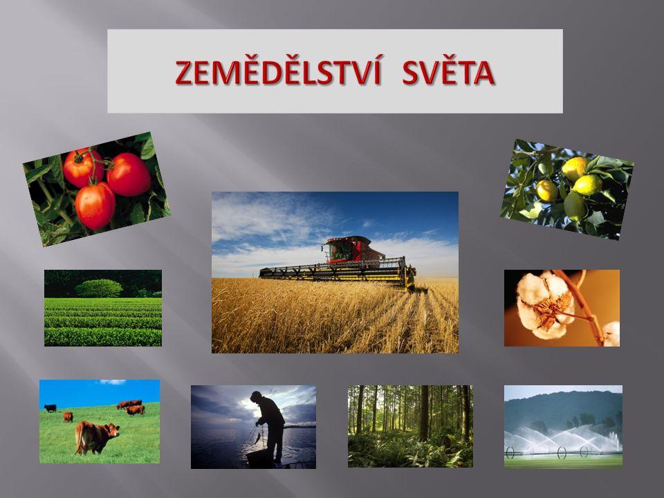 Který z uvedených států má největší % zaměstnanost v zemědělství.