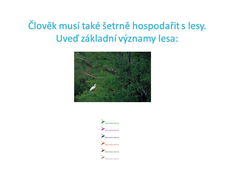 Člověk musí také šetrně hospodařit s lesy. Uveď základní významy lesa:  ……….