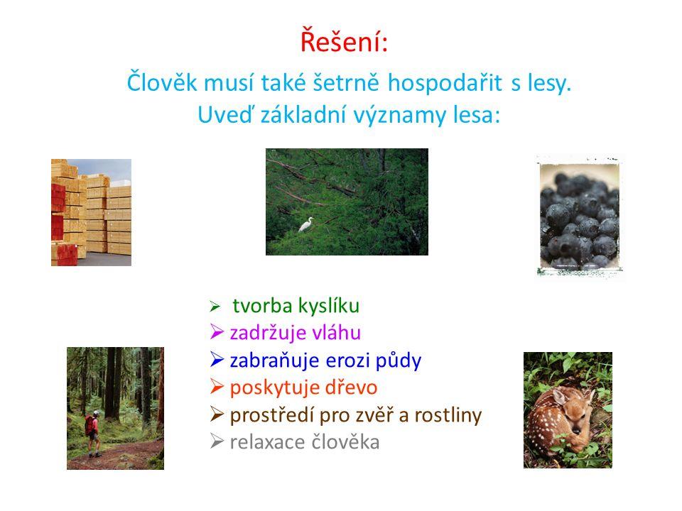  tvorba kyslíku  zadržuje vláhu  zabraňuje erozi půdy  poskytuje dřevo  prostředí pro zvěř a rostliny  relaxace člověka Řešení: Člověk musí také
