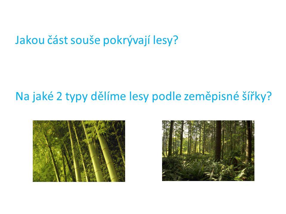 Jakou část souše pokrývají lesy? Na jaké 2 typy dělíme lesy podle zeměpisné šířky?