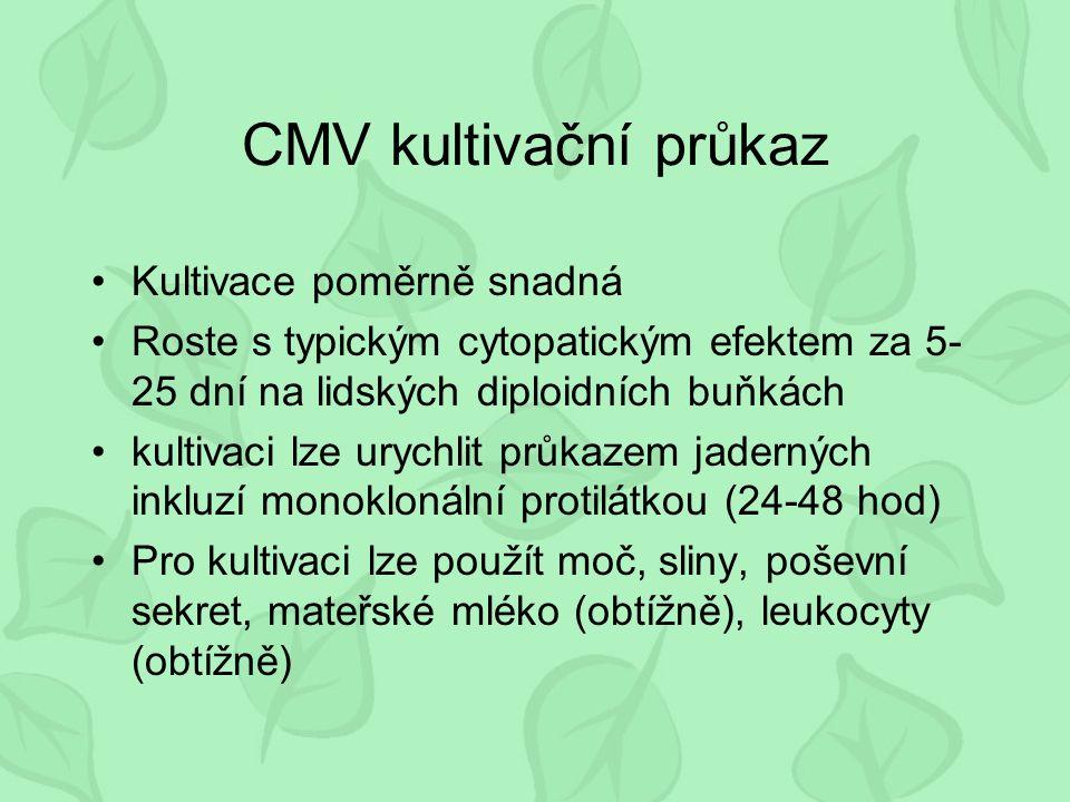 CMV kultivační průkaz Kultivace poměrně snadná Roste s typickým cytopatickým efektem za 5- 25 dní na lidských diploidních buňkách kultivaci lze urychlit průkazem jaderných inkluzí monoklonální protilátkou (24-48 hod) Pro kultivaci lze použít moč, sliny, poševní sekret, mateřské mléko (obtížně), leukocyty (obtížně)