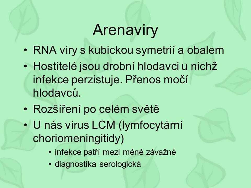 Arenaviry RNA viry s kubickou symetrií a obalem Hostitelé jsou drobní hlodavci u nichž infekce perzistuje.