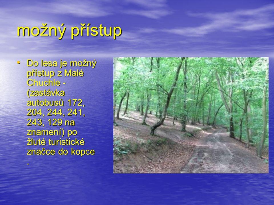 možný přístup Do lesa je možný přístup z Malé Chuchle - (zastávka autobusů 172, 204, 244, 241, 243, 129 na znamení) po žluté turistické značce do kopce.