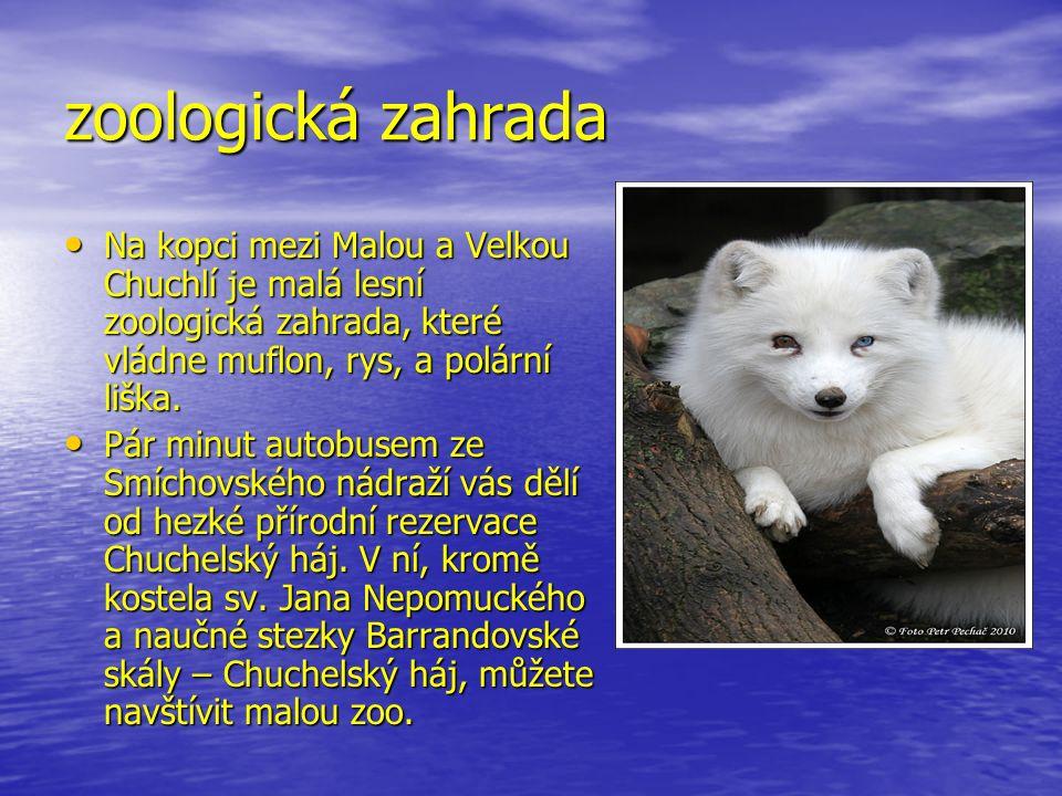 zoologická zahrada Na kopci mezi Malou a Velkou Chuchlí je malá lesní zoologická zahrada, které vládne muflon, rys, a polární liška.